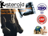 Pré-mélangé injecteur de stéroïde Equi Test 450 Mg / Ml Bodybuilding Safe Oil