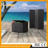 Мебель крылечку комнаты китайского типа крытая живущий складывая Wicker экран ротанга
