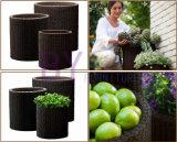 Succulent Plant Home Gardening Cilíndricos Floor-Standing PE Rattan Flower Pot