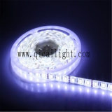 Tira flexible ajustable del CCT 5050 SMD LED del alto lumen