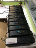 De Batterij van het Lithium van de Batterij van Downtube van de Hoge Macht van Whosale 48V 14ah voor e-Fiets Batterij met BMS