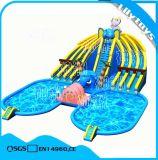 De Reus die van Lilytoys het Opblaasbare BedrijvenTerrein van het Water voor het Amuseren bewegen