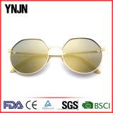 Ynjn cinco colores Claro Unisex gafas de sol de logotipo personalizado (YJ-F83887)