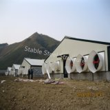 Bâtiment à structure multiple en acier à usage multiple pour Hog House