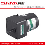 80mm 25W Micro AC Induction Motor