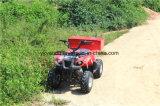 Nuevo Tema 110cc/eléctrico de 125cc ATV con alta calidad