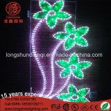 Indicatore luminoso di festa di motivo di alta qualità 220V 30W per la decorazione della strada