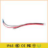 Modulo dell'interno del viale LED di colore completo HD
