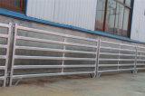 Faible coût ovale en métal de la Chèvre de panneaux de triage de moutons pour la vente (XMS5)