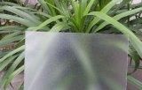 Feuille givrée par feuille solide givrée de polycarbonate de matériau de construction
