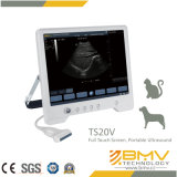 Ts20V de Digitale Ultrasone Veterinaire Ultrasone klank van de Detector