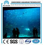 De Leverancier van China goot Duidelijke AcrylBladen die voor Aquarium worden gebruikt
