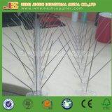 L'acier inoxydable de vente d'usine de base chaude directe de PC colle d'anti transitoires d'oiseau