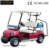 2つのシートの電気スポーツのゴルフ車
