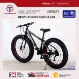 マウンテンバイクのタイプおよびアルミニウム物質的な合金フレームの脂肪質のタイヤ4.0のマウンテンバイク
