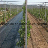 сплетенная Polypropelene крышка PP Geotextile 90GSM/100GSM земная для земледелия сада