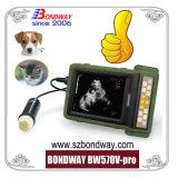 Reprodução Portáteis de Leitura do sistema de ultra-som de EFP, máquina de ultra-sons de veterinários, com bateria recarregável para utilização no exterior, a China, o Melhor Preço