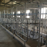 Los huesos de pescado 32 Sistema de Salón de ordeño de vacas en venta