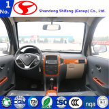 Bester Export-chinesisches elektrisches Auto hergestellt in China