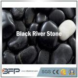 Brillo Normal Piedra de Río Piedra para Parque, Suelo Público, Decoración Interior Piedra