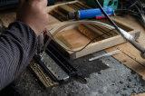Merk 10 van Sinomusik de Harmonika van de Harp van de Blauw van Gaten met het Riet van het Messing