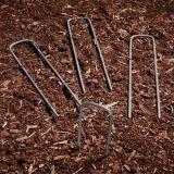 Giardino che fissa i chiodi a forma di U della graffetta U della rete fissa
