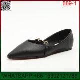 새로운 디자인 Shoes 편평한 날카로운 금속 한 판 숙녀