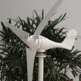 200W de kleine Turbogenerator 12V 24VAC van de Wind voor Verkoop