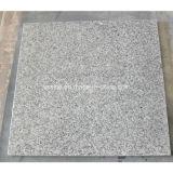 Baldosas de granito gris natural mayorista del suelo y pared