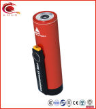 Milieu Bescherming en het Hoge Efficiënte Draagbare Brandblusapparaat van de Brand