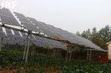 P96-270W einzelner Kristall-Silikon-photo-voltaisches Solarpanel, monokristalliner Sonnenkollektor