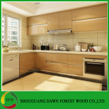 Gabinetes de cozinha lustrosos elevados da laca do projeto moderno