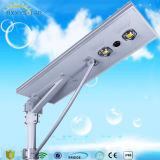 5W-120W Luminaria al aire libre integró todos en una luz solar del jardín de la calle del LED con la cámara del CCTV