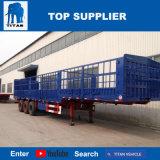 Titan-Fahrzeug - Behälter-Seiten-Ladevorrichtung des seitliche Wand-halb Schlussteil-40FT