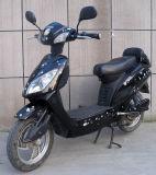 250With350With500W de Elektrische Fiets van de motor met de Rem van de Trommel (eb-012)