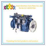 Puissance moteur Weichai rentables pour le camion