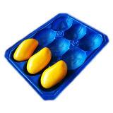 Anzeigendes und packendes Plastikfrucht-Wegwerftellersegment der Gebrauch-Mangofrucht-pp.