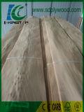 Le placage 0.5mm d'orme a employé pour des meubles, panneaux stratifiés