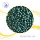 微生物の細菌肥料から成っているアミノ酸