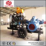 Насосы водопотребления для орошения двигателя дизеля аграрные установили