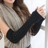 Réchauffeur de tricotage de bras de modèle neuf, mitaines de filles, coton et gants acryliques de Knit pour la vente en gros