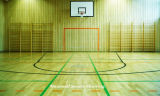Campo de basquetebol Flooring - Piso de PVC da China Factory