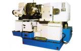 Engranajes cónicos Generador con el CE estándar ( GN25 )