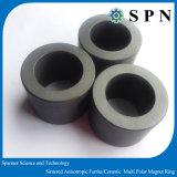 Постоянный Ферритовый/ керамические/ ферритовый магнит металлокерамические кольца для двигателя
