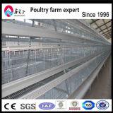 La volaille contrôlent le matériel de ferme avicole de matériels de ferme de cloche/de matériel de ferme couche de volaille/oeufs de poulet