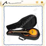 Professional Foam Bass Guitar Player Use Classic Guitar Case