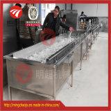 Grande capacidade todo o tipo da máquina da limpeza da bolha do vegetal & da fruta