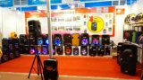 Rechargeable Battery /USB/SD/Wireless Microphone Cx 15를 가진 15 인치 Outdoor PA Bluetooth Speaker