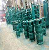 Qj Corps en fonte de la série de puits profond de la pompe à eau submersibles