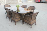 Style moderno Aluminum e PE Rattan Handcraft Wicker Outdoor Furniture (BP-3017C)
